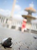 πλατεία Peter s Άγιος στοκ εικόνες