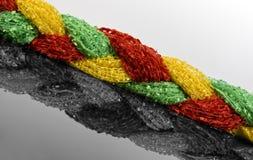 πλεξίδα χρώματος Στοκ Φωτογραφία