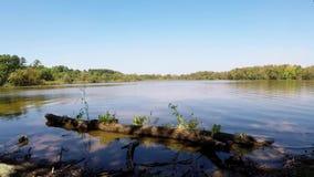 Πλευρά λιμνών με τους κυματισμούς νερού απόθεμα βίντεο