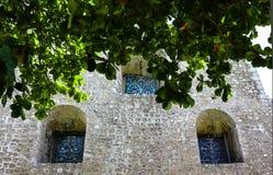 Πλευρά cathederal με τα deepset σχηματισμένα αψίδα stainedglass παράθυρα με το τροπικό φύλλωμα στοκ εικόνα