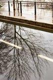 Πλημμυρισμένη ζημία Παρίσι αιτιών ποταμών του Σηκουάνα τραπεζών στοκ φωτογραφίες
