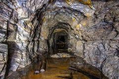 Πλημμυρισμένο παλαιό ορυχείο χρυσού στοκ φωτογραφία