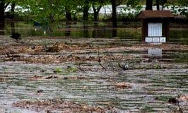 Πλημμυρισμένο ρεύμα Στοκ εικόνα με δικαίωμα ελεύθερης χρήσης