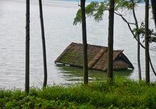 Πλημμυρισμένο σπίτι στο δάσος μεταξύ των δέντρων Στοκ εικόνα με δικαίωμα ελεύθερης χρήσης