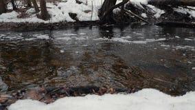 Πλημμύρα άνοιξη σε ένα χιονώδες δασικό Κίνημα του νερού μέσω του δάσους φιλμ μικρού μήκους