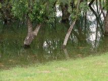 πλημμύρα Στοκ φωτογραφίες με δικαίωμα ελεύθερης χρήσης