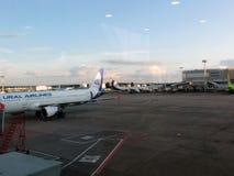 πληρωμένος η Μόσχα χώρος στάθμευσης domodedovo αερολιμένων Εσωτερική άποψη διεθνούς Στοκ Εικόνες