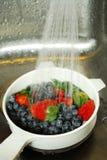 πλύσιμο μούρων Στοκ εικόνα με δικαίωμα ελεύθερης χρήσης