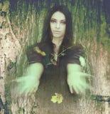 Πνεύμα του δάσους, η τήξη του ατόμου και φύση Στοκ Εικόνα