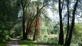 Πνεύμα φύσης Στοκ Εικόνες