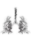 Πνεύμονας καπνού και αναπνευστικό ανθρώπινο σύστημα Στοκ Εικόνες