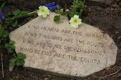 Ποίημα κήπων στην πέτρα με primroses την έννοια ευγένειας στοκ εικόνες