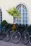 Ποδήλατα και δέντρο λεμονιών στη σκάφη Στοκ φωτογραφία με δικαίωμα ελεύθερης χρήσης