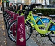 Ποδήλατα LouVelo για το μίσθωμα στοκ φωτογραφίες με δικαίωμα ελεύθερης χρήσης