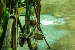 Ποδήλατο αγροτικό στενό σε έναν επάνω φύσης στοκ εικόνες