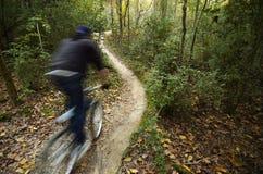 Ποδήλατο βουνών στο πάρκο ποταμών Comite στοκ φωτογραφίες με δικαίωμα ελεύθερης χρήσης