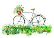 Ποδήλατο και καλάθι σε ένα λιβάδι λουλουδιών Θερινή εικόνα ελεύθερη απεικόνιση δικαιώματος