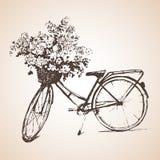 Ποδήλατο με τη μεγάλη δέσμη των λουλουδιών σκίτσο διανυσματική απεικόνιση