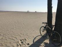 Ποδήλατο παραλιών σφραγίδων Στοκ φωτογραφίες με δικαίωμα ελεύθερης χρήσης