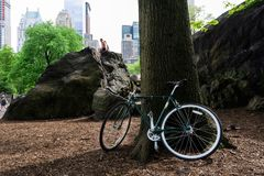 Ποδήλατο που σταθμεύουν κάτω από ένα δέντρο στο Central Park, πόλη της Νέας Υόρκης στοκ εικόνες με δικαίωμα ελεύθερης χρήσης