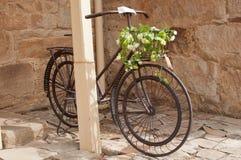 Ποδήλατο σιδήρου με τη ρύθμιση λουλουδιών Στοκ Εικόνες