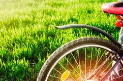 Ποδήλατο στενό σε επάνω φύσης, ταξίδι, υγιής τρόπος ζωής, περίπατος χωρών Στοκ Φωτογραφία