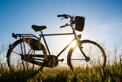 Ποδήλατο στις χλόες την ηλιόλουστη ημέρα στοκ εικόνα