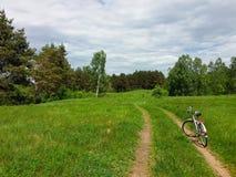 Ποδήλατο στον παλαιό δρόμο σε μια φυσική φύση Αθλητισμός και ταξίδι με το ποδήλατο Στοκ Εικόνα