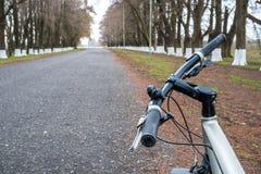 Ποδήλατο στο δρόμο μεταξύ των δέντρων, Poti, Γεωργία Στοκ εικόνα με δικαίωμα ελεύθερης χρήσης
