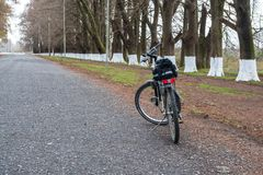 Ποδήλατο στο δρόμο μεταξύ των δέντρων, Poti, Γεωργία Στοκ Εικόνες