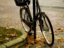 Ποδήλατο στο autumm στοκ εικόνες με δικαίωμα ελεύθερης χρήσης