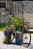 ποδήλατο Στοκ Εικόνες