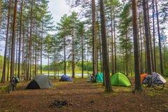 Ποδηλάτες στρατόπεδων στο δάσος Στοκ φωτογραφία με δικαίωμα ελεύθερης χρήσης