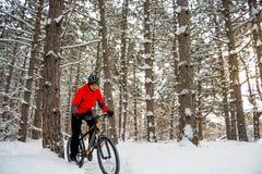 Ποδηλάτης στο κόκκινο οδηγώντας ποδήλατο βουνών στην όμορφη χειμερινή δασική περιπέτεια, τον αθλητισμό και την έννοια ανακύκλωσης Στοκ εικόνα με δικαίωμα ελεύθερης χρήσης