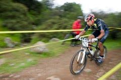 ποδηλάτης στοκ φωτογραφίες