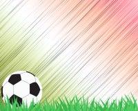 Ποδόσφαιρο ποδοσφαίρου στη χλόη ελεύθερη απεικόνιση δικαιώματος