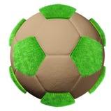 ποδόσφαιρο chia Στοκ Εικόνες