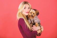Ποιες φυλές σκυλιών πρέπει να φορέσουν τα παλτά Αγκάλιασμα κοριτσιών λίγο σκυλί στο παλτό Η γυναίκα φέρνει το τεριέ του Γιορκσάιρ στοκ φωτογραφίες