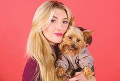 Ποιες φυλές σκυλιών πρέπει να φορέσουν τα παλτά Επίδεσμος του σκυλιού για το κρύο καιρό Σιγουρευτείτε ότι το σκυλί αισθάνεται άνε στοκ φωτογραφίες