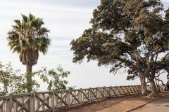 Ποικίλα δέντρα και στις δύο πλευρές ενός φράκτη αγνοούν, μουντός ουρανός στοκ εικόνες