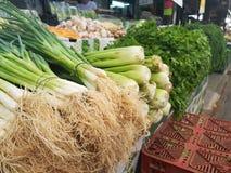 Ποικίλα φυλλώδη λαχανικά στην αγορά στέκονται στοκ εικόνες