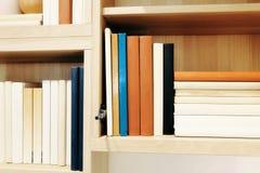 Ποικιλία του σωρού βιβλίων στο ράφι Στοκ εικόνες με δικαίωμα ελεύθερης χρήσης