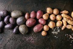 Ποικιλία των ακατέργαστων πατατών στοκ εικόνα με δικαίωμα ελεύθερης χρήσης