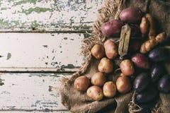 Ποικιλία των ακατέργαστων πατατών Στοκ εικόνες με δικαίωμα ελεύθερης χρήσης