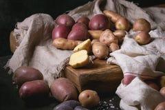 Ποικιλία των ακατέργαστων πατατών Στοκ φωτογραφία με δικαίωμα ελεύθερης χρήσης