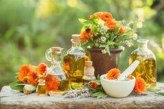 Ποικιλία των φρέσκων χορταριών, του calendula και των ελαίων Στοκ εικόνες με δικαίωμα ελεύθερης χρήσης