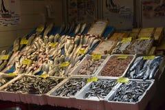Ποικιλία των ψαριών στην αγορά ψαριών της Ιστανμπούλ Στοκ Εικόνα