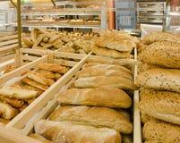 ποικιλία ψωμιού αρτοποι&ep Στοκ φωτογραφία με δικαίωμα ελεύθερης χρήσης
