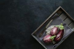 Ποικιλίες μελιτζάνας στο μαύρο κύπελλο πέρα από το σκοτεινό υπόβαθρο πλακών Στοκ φωτογραφίες με δικαίωμα ελεύθερης χρήσης