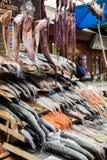 Ποικιλομορφία των φρέσκων ψαριών και των θαλασσινών στην αγορά ψαριών Angelmo, Puerto Montt, Χιλή Στοκ Εικόνες
